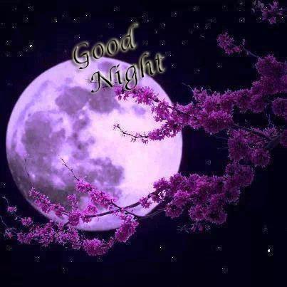 good night my dear friends