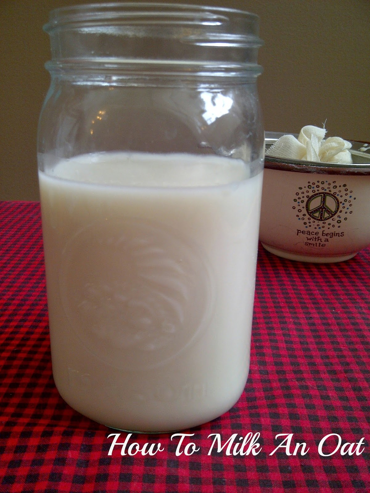 Make your own plant-based, non-dairy milk:  How To Oat Milk