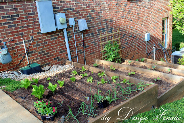 Terraced Backyard Diy :  garden This is where youll find me most days when the weather is