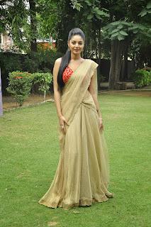 Sanam shetty latest glam pics 004.jpg