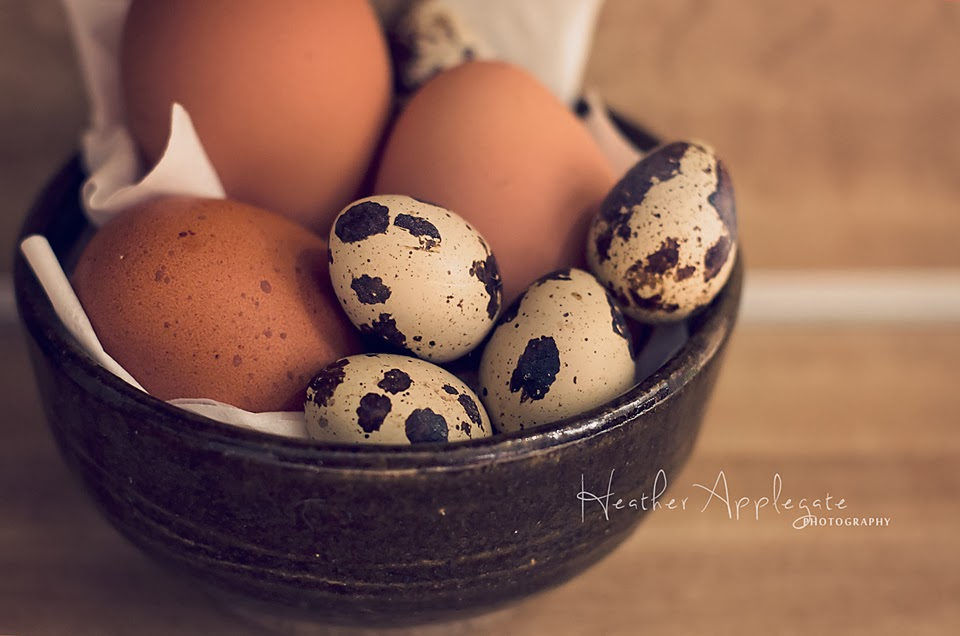 http://heather-applegate.artistwebsites.com/featured/fresh-eggs-heather-applegate.html