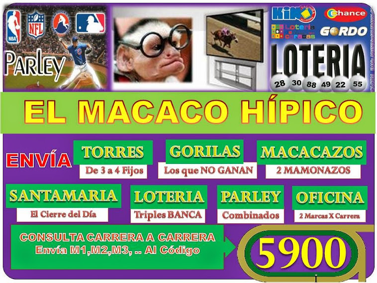 MACACO HIPICO  CODIGO 5900