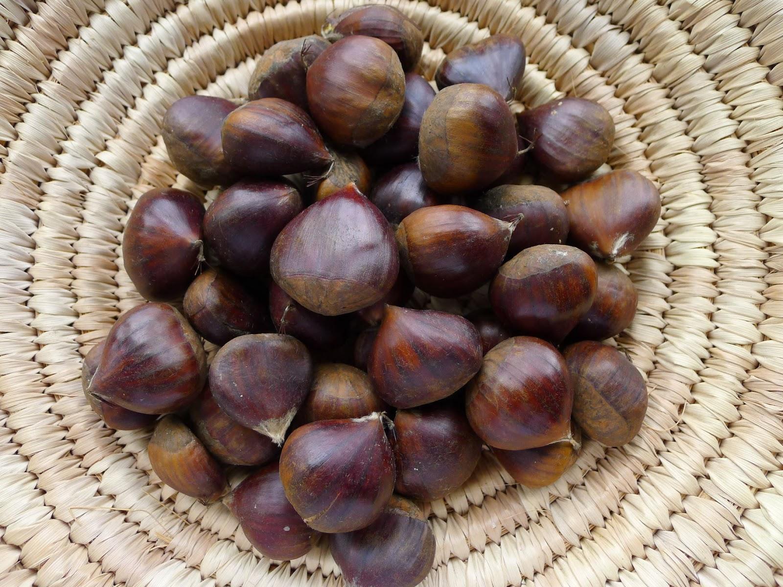My kitchen in spain chestnut season for The chestnut