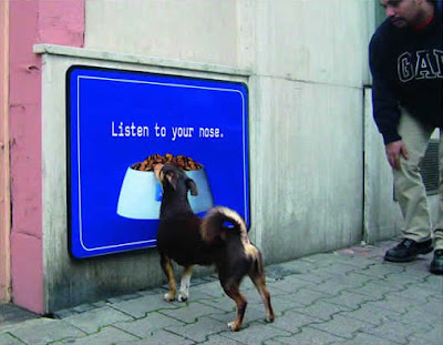 Dog fooled by Advertisement