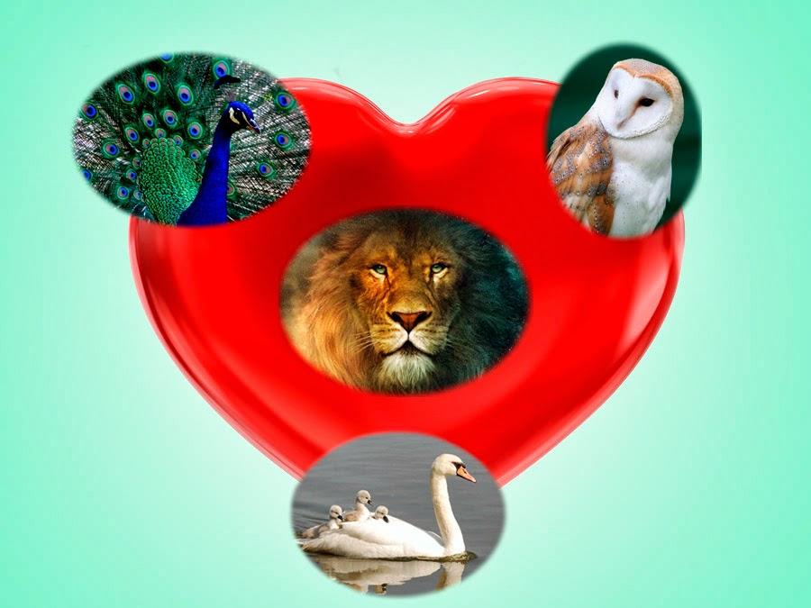 """""""El Corazón es un santuario en cuyo centro se encuentra el Ojo"""""""