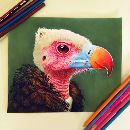 13-Morgan-Davidson-Colour-and-Details-in-Photo-Real-Drawings-www-designstack-co