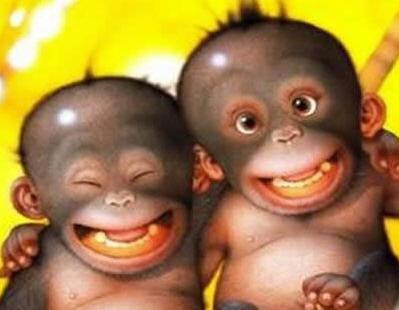 Big monkey smile
