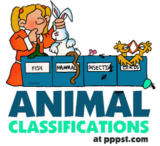 http://www.sheppardsoftware.com/content/animals/quizzes/kidscorner/animal_games_forest_large.html