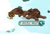 My Arctic Wolf