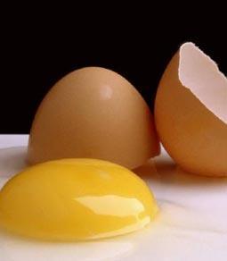 صفار البيض قد يقلل خطر أمراض القلب والسرطان