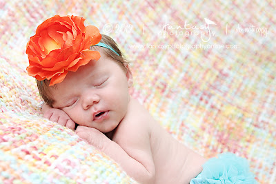 Winston Salem Newborn Photographers - Fantasy Photography in the Triad