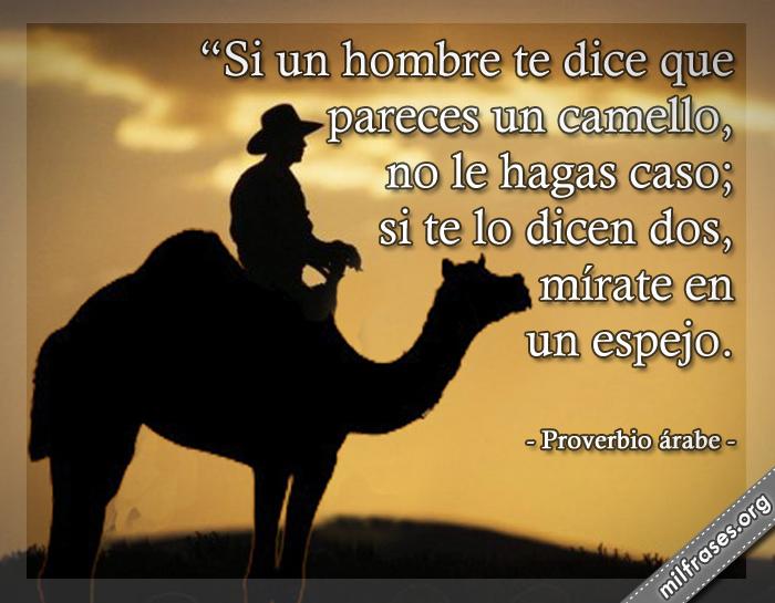 Si un hombre te dice que pareces un camello, no le hagas caso; si te lo dicen dos, mírate un espejo. frases, refranes, dichos y Proverbio árabe
