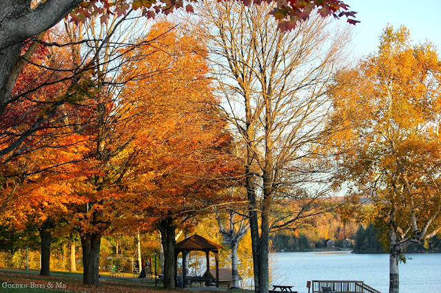 Schroon Lake beach fall foliage vis www.goldenboysandme.com