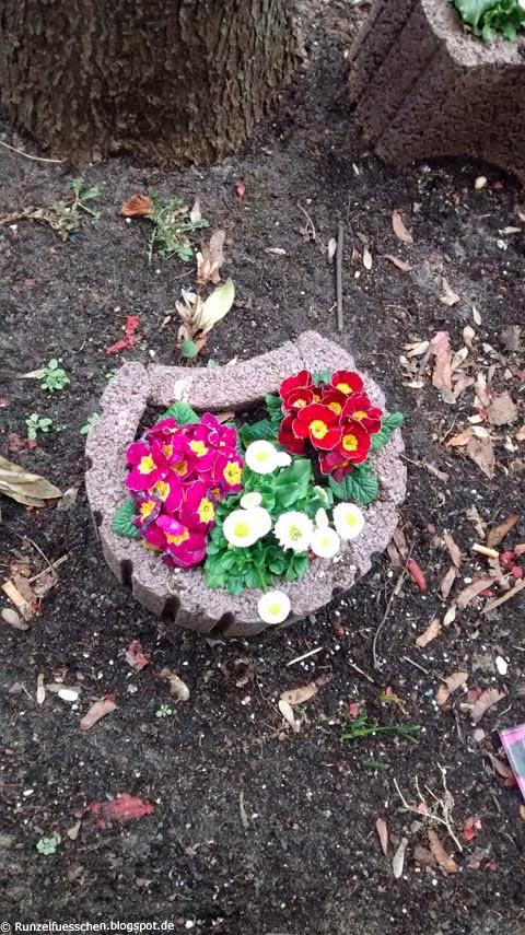 Runzelfuesschen Baby entdeckt Blumen