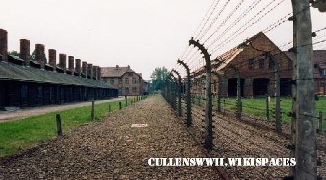 Lokasi Bersejarah Dunia, Kamp Auschwitz (Kasus Ribuan Orang Mati Di Kamp Konsentrasi)