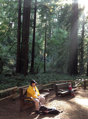 Chris and his black Lab sit on a bench as sunlight filters through the redwoods