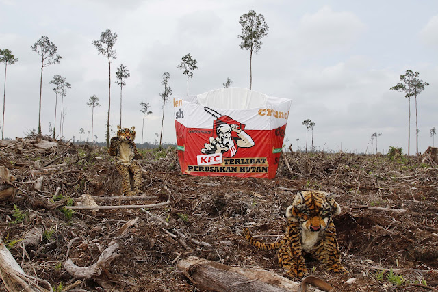 KFC  Diminta Berhenti Menggunakan  Produk APP
