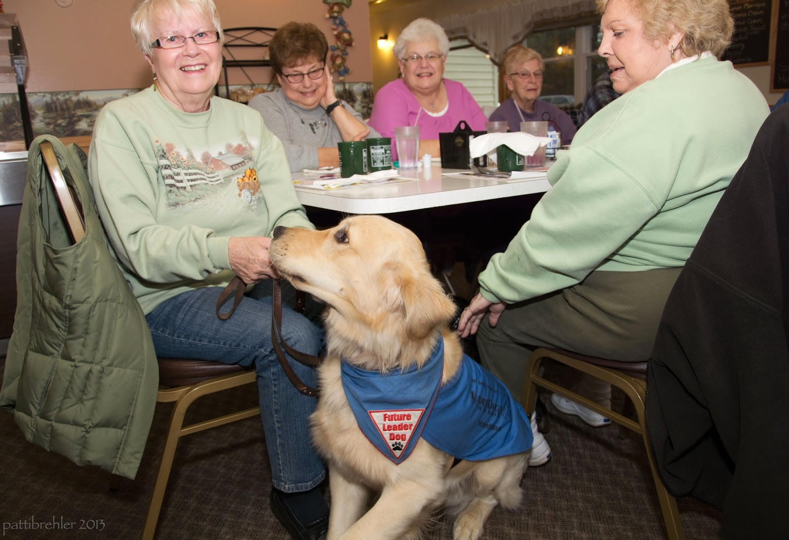 A group of older women are sitting at a restaurant table. The woman on the left side is holding the leash of a golden retriever, who is wearing a blue bandana and jacket. The dog looks like he is about to leap on her lap, the women are all smiling. The two women in front are wearing light green sweatshirts.