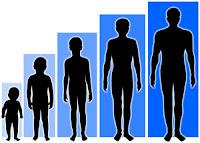 cara meninggikan badan, tips tinggi badan bertambah