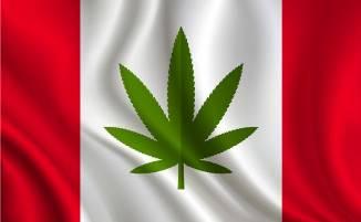 Canada a aprobat legalizarea consumului de marijuana în scop recreaţional