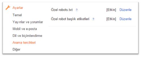 Blogger SEO Özel Robot Başlık Etiketleri Ayarları
