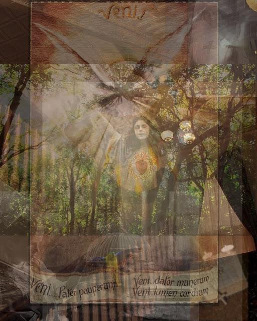 heidi utz photography, four birds at morning song, photomontage