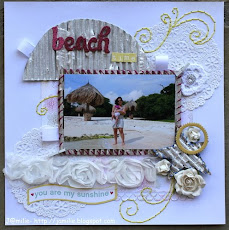 Stitching Feature- April 24, 2011