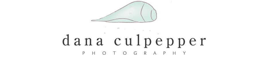 Dana Culpepper Photography- Newborn Baby Infant Child & Family Photographer in Memphis
