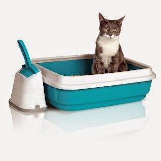comprar una litera para gatos
