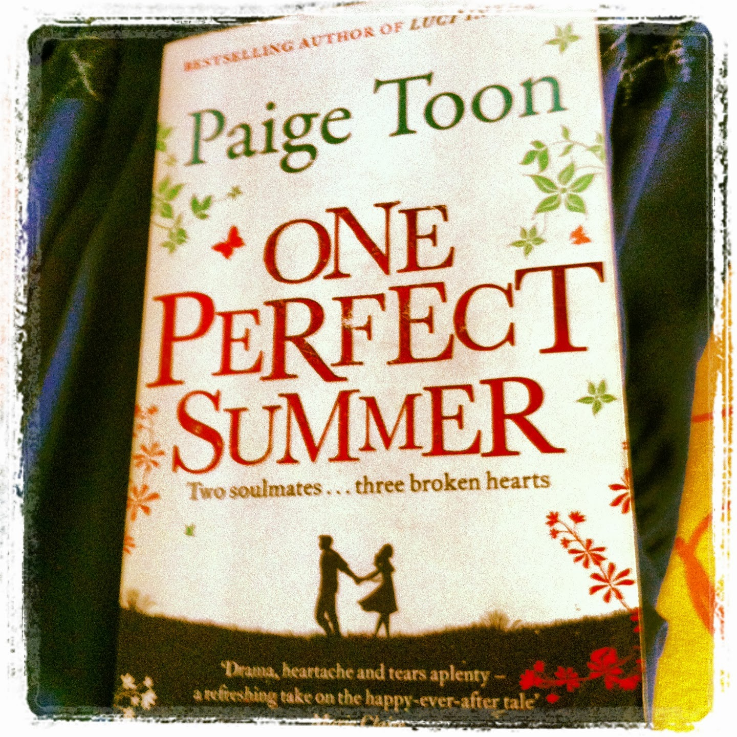 One Perfect Summer Novel