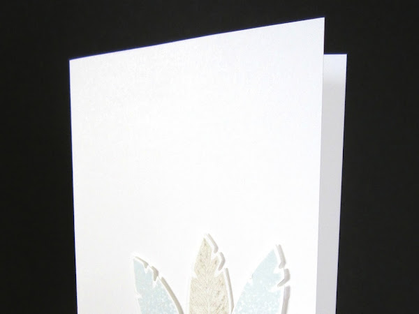 Three Cheerful Feathers