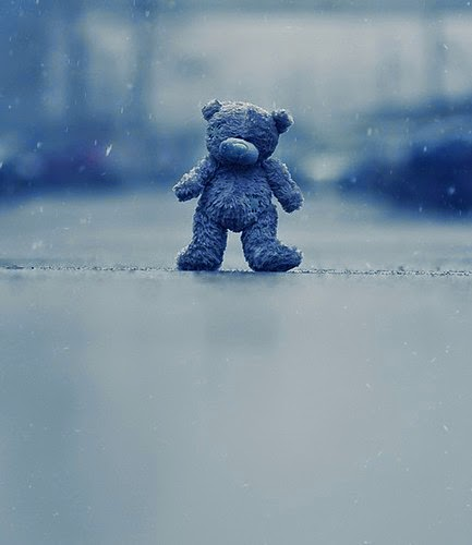 cute-sad-and-lonely-teddy-bear-photography-stock-images.jpg