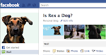 <br><br>Be a Fan of Rex&#39;s Page!