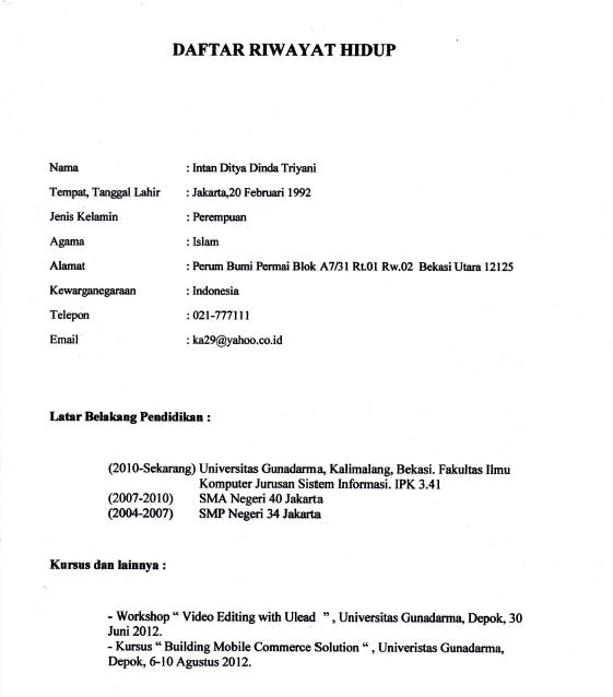 contoh resume novel