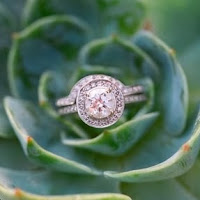 Succulent and engagement ring
