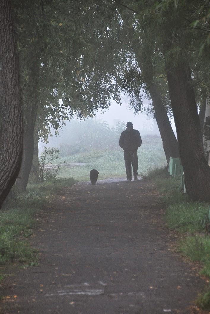 Лысьва, туман в детском парке