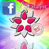 Facebook Finy Catalyst