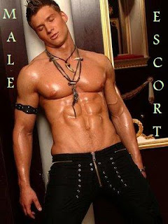 real gay escort man gigolo