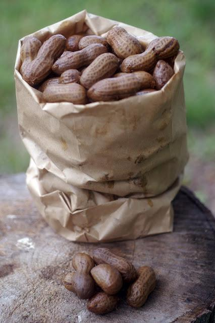 """It's A Southern Thing"" Boiled Peanuts 