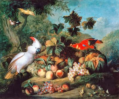 aves-exoticas-en-paisajes