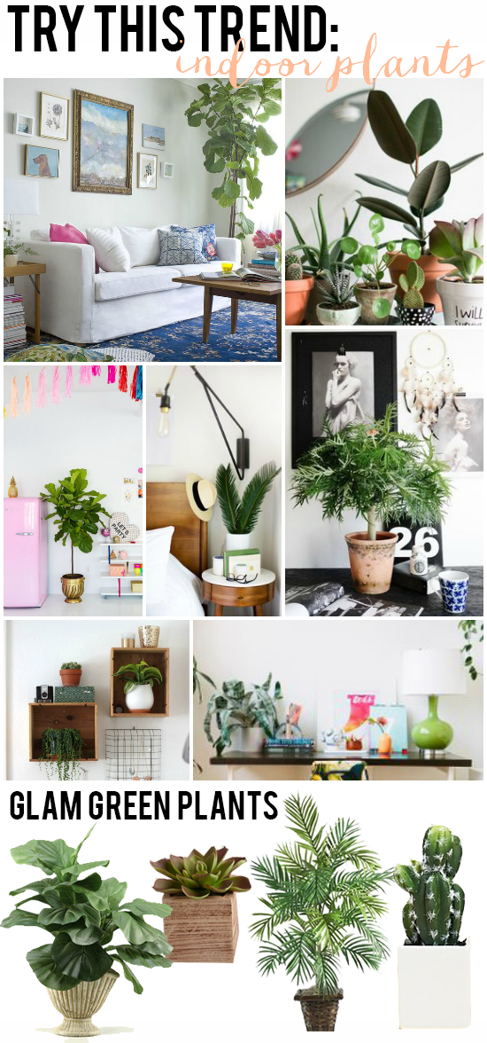 Try This Trend: Indoor Plants