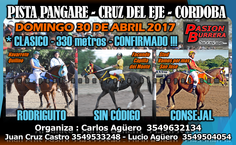 PANGARE 30 - 330