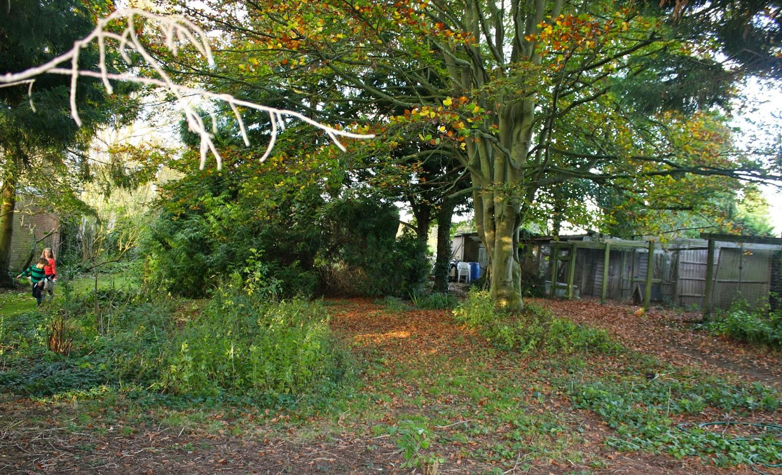 garden ash cottage
