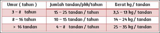 Tabel Perkembangan jumlah dan berat tandan kelapa sawit