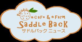 サドルバックニュース-小田原市江之浦のカフェ&牧場ブログ