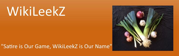 WikiLeekZ