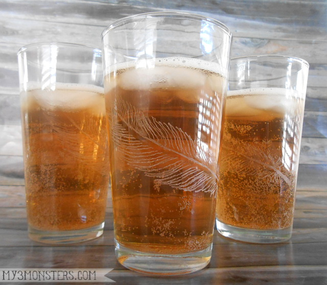 DIY etched feather drinking glasses at my3monsters.com