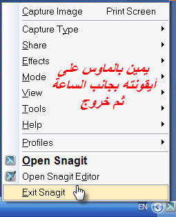 ����� ������ snagit 11.0.0.207 ����� ��� �������� + �������� + �������