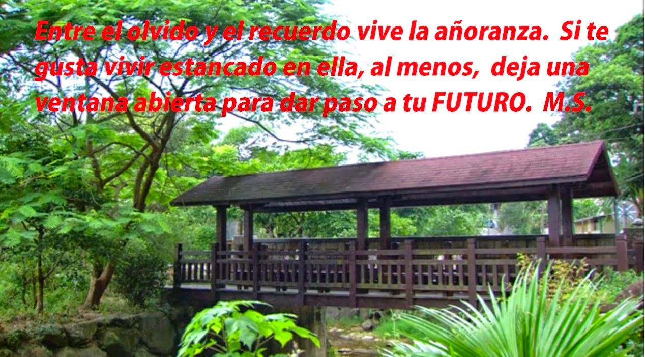 El Blog de María Serralba - #futuro
