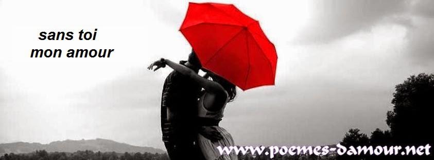 poème d'amour 230: sans toi mon amour